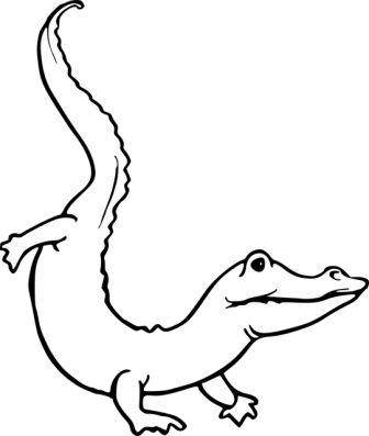Dibujos de cocodrilos » COCODRILOPEDIA